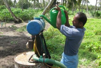 Pequenos agricultores nem sempre usam proteção quando utilizam pesticidas. Foto: FAO