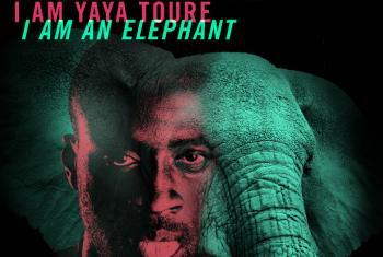 Yaya Touré participa da iniciativa #WildforLife. Foto: Pnuma