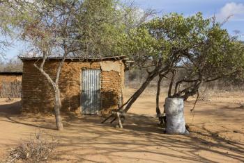 Relatório do Banco Mundial fala sobre as intervenções que podem aumentar a resiliência à seca, a longo prazo, no continente africano.Foto: Banco Mundial/Flore de Preneuf