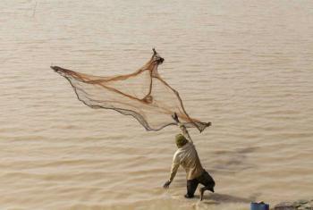 Outra meta é combater a pesca ilegal. Foto: FAO