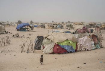 Acampamento para deslocados em Diffa, Níger. Foto: Unicef/Sylvain Cherkaoui