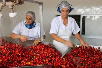 América Latina e Caribe são uma das regiões em desenvolvimento com maior percentual de mulheres em cargos de gerência. Foto: Banco Mundial