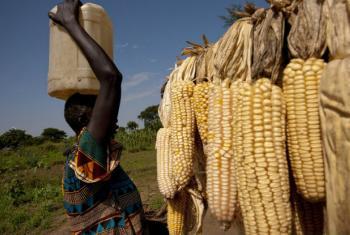 Transformação de recursos naturais em África. Foto: Banco Mundial/Arne Hoel