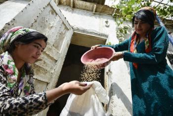 Foto: FAO/Nozim Kalandarov