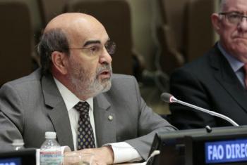 José Graziano da Silva. Foto: ONU/Evan Schneider (arquivo)