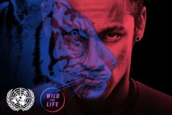 """Neymar """"transforma-se"""" em um tigre na campanha do Pnuma"""