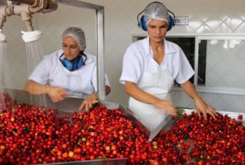 América Latina e Caribe é uma das regiões em desenvolvimento com maior percentual de mulheres em cargos de gerência. Foto: Banco Mundial