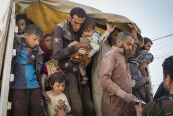 Deslocados internos chegam no campo de refugiados Debaga, em Erbil, ao norte do Iraque. Foto: Acnur/Ivor Prickett