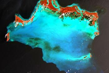 Imagem de satélite do Caribe. Foto: ONU/Usgs/Nasa