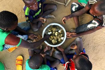 O relatório menciona que no norte da Nigéria, mais de 3 milhões de pessoas necessitam de uma resposta urgente. Foto: Ocha/Ivo Brandau