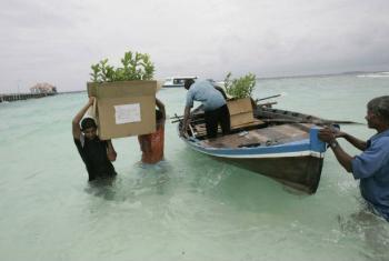 Projeto de agência da ONU ajuda pequenos Estados-ilhas em desenvolvimento, como as Maldivas, a mitigar e adaptar a produção à mudança climática. Foto: FAO/Prakash Singh