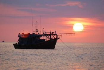 A FAO e a Santa Sé defendem também o fim da pesca ilegal ou não reportada, que retira dos oceanos entre 11 e 26 milhões de toneladas de peixes por ano. Foto: FAO