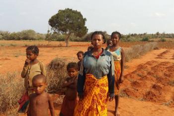 As pragas são endémicas em Madagáscar, onde cerca de 400 casos são reportados anualmente. Região sul do Madagáscar tem sido atingida por secas consecutivas. Foto: FAO/Luc Genot