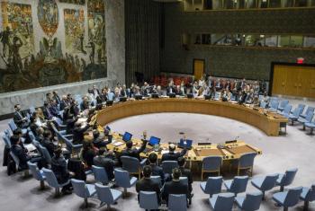 Votação na manha desta quarta-feira, 30 de novembro, no Conselho de Segurança da ONU. Foto: ONU/Manuel Elias
