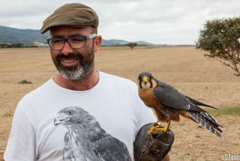 Foto: Associação Portuguesa de Falcoaria