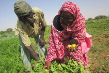Foto: Pnud Mauritânia/Oumou Sow