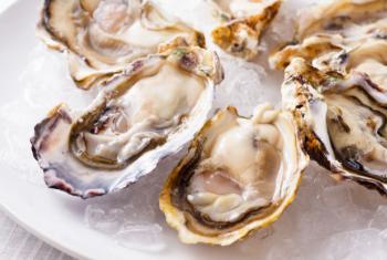 A agência da ONU defende a criação de uma área de preservação para as ostras que produzem pérolas. Foto: FAO