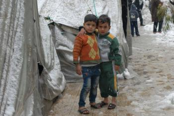 Apelo humanitário para refugiados palestinos. Foto: Unrwa