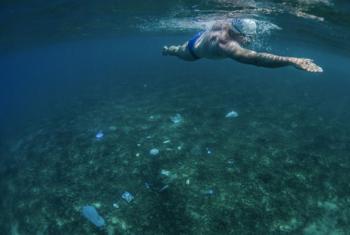 Patrono da ONU Meio Ambiente, Lewis Pugh, está nadando pelos Sete Mares para pedir proteção aos mares do mundo. Foto: ONU Meio Ambiente.