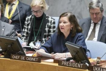 Maria Luiza Viotti. Foto: ONU/Rick Bajornas