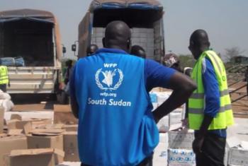 Camiões do PMA deverão transportar sorgo numa distância de 500 quilómetros. Foto: PMA