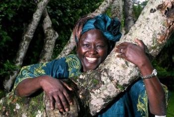 Legado de Wangari Maathai é celebrado neste 3 de março. Foto: ONU Ambiente