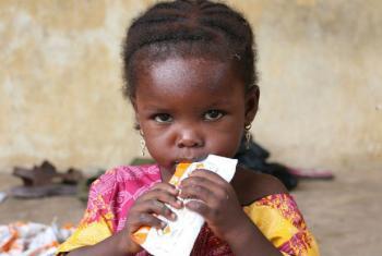 O contributo deve ajudar a aliviar o sofrimento de populações deslocadas pela violência causada pelo movimento terrorista Boko Haram. Foto: PMA/Simon Pierre Diouf
