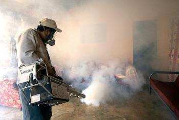 Nova medida quer controlar zika e dengue. Foto: Opas/OMS