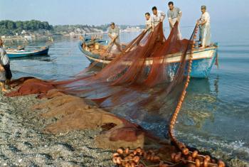 Pescadores na Grécia. Foto: ONU/Tsagris