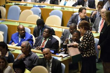 A Assembleia Geral da ONU elege todos os anos cinco países para ocupar uma cadeira não-permamente.Foto: ONU/Manuel Elias
