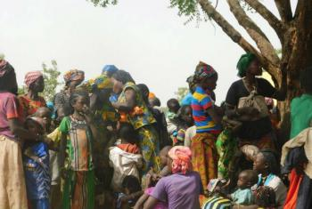 Refugiados centro-africanos no Chade. Foto: ONU/Ezzat Habib Chami