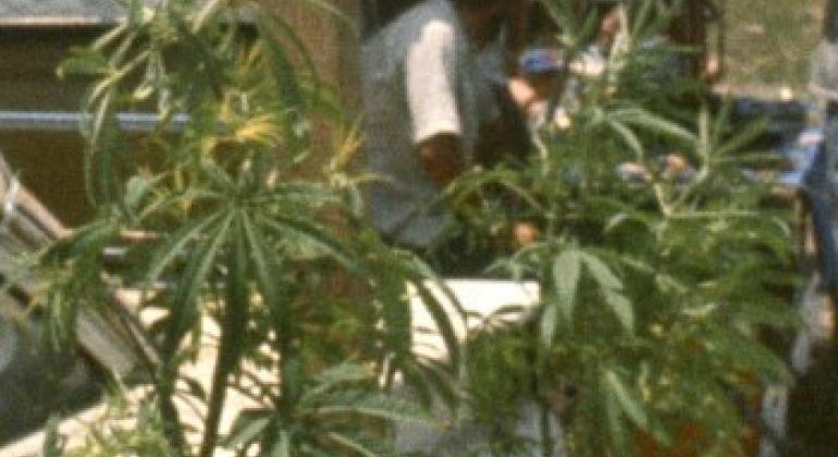 Кокаин закладки москва