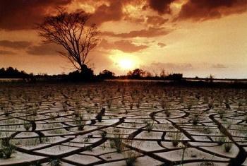 Глобальное потепление. Фото ООН