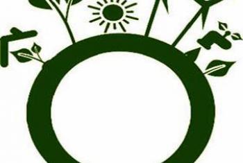 «Зеленая» экономика