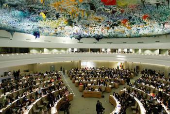 Совет ООН по правам человека. Фото ООН