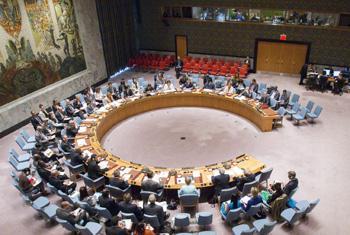 Заседание Совета Безопасности. Фото ООН