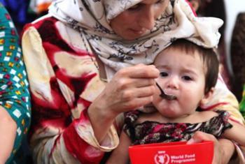 Программа питания для детей в Таджикистане. Фото ВПП