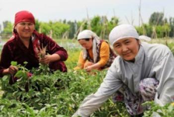 Женщины-фермеры. Фото ВПП