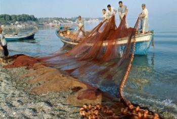 Рыбаки в Греции. Фото ООН