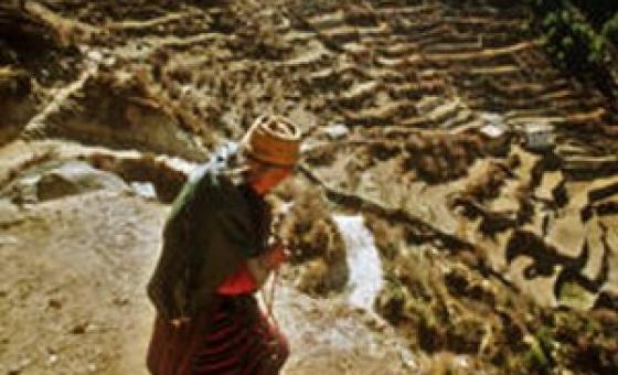 Mkazi wa kwenye mteremeko wa milima ya Himalaya. (Picha:FAO/http://bit.ly/1Qj3eKX)