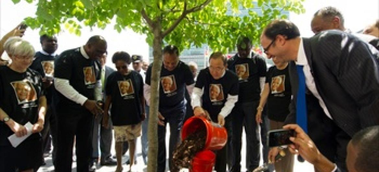 Hafla ya upanzi wa mti wa Mandela (Picha/um/Eskinder Debebe/NICA)