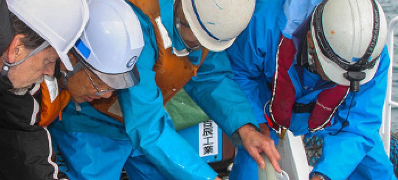 watalaam wa IAEA wakipima maji ya bahari, karibu ya Fukushima. @IAEA/David Osborn