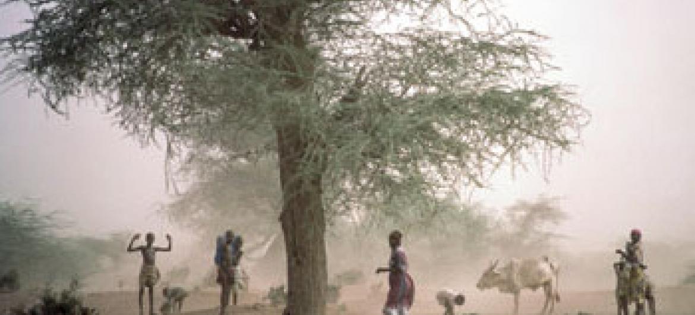 Picha ya UNDP - Kenya