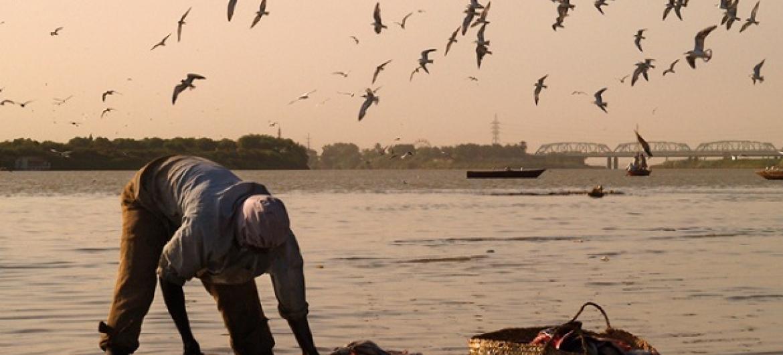Mabadiliko ya tabianchi yaathiri sekta ya uvuvi. Huyu ni vvuvi nchini Sudan. (Picha:World Bank/ Arne Hoel)