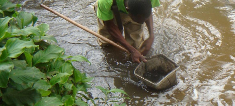 Mradi wa kusaidia kuboresha mazingira kwa kulinda misitu na mito nchini Kenya.(Picha:UNEP)