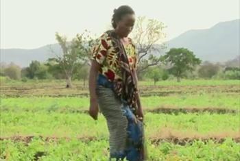 Mkulima Cecilia Williams akiwa shambani picha@IFAD