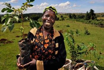 Upandaji miti sahihi kwenye eneo husika hulinda mazingira halisi ya eneo hilo.@UNEP