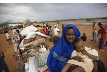 Kambi ya wakimbizi ya Dadaab, Kenya. Picha: UNHCR/B.Bannon