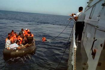Picha@UNHCR/A. Di Loreto(UN News Centre)