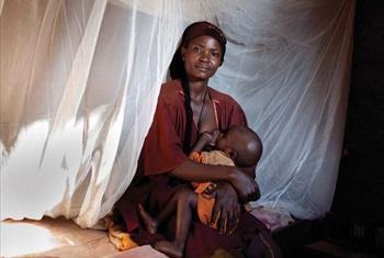 Roll back Malaria(RBM)Picha ya Benjamin Schilling/PSI